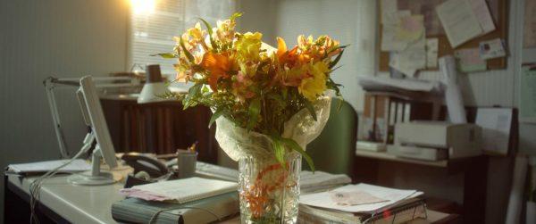 loreak flores foto