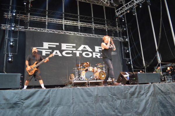 fearr